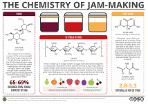 Chemistry of Jam making - tiny