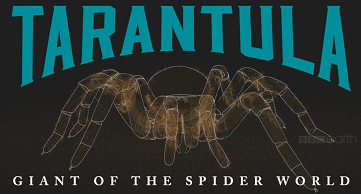 Tarantula - Giant of the Spider World