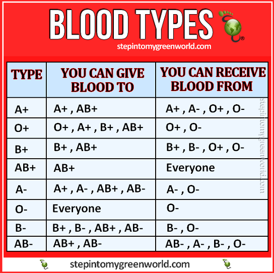blood-types-RED1.png